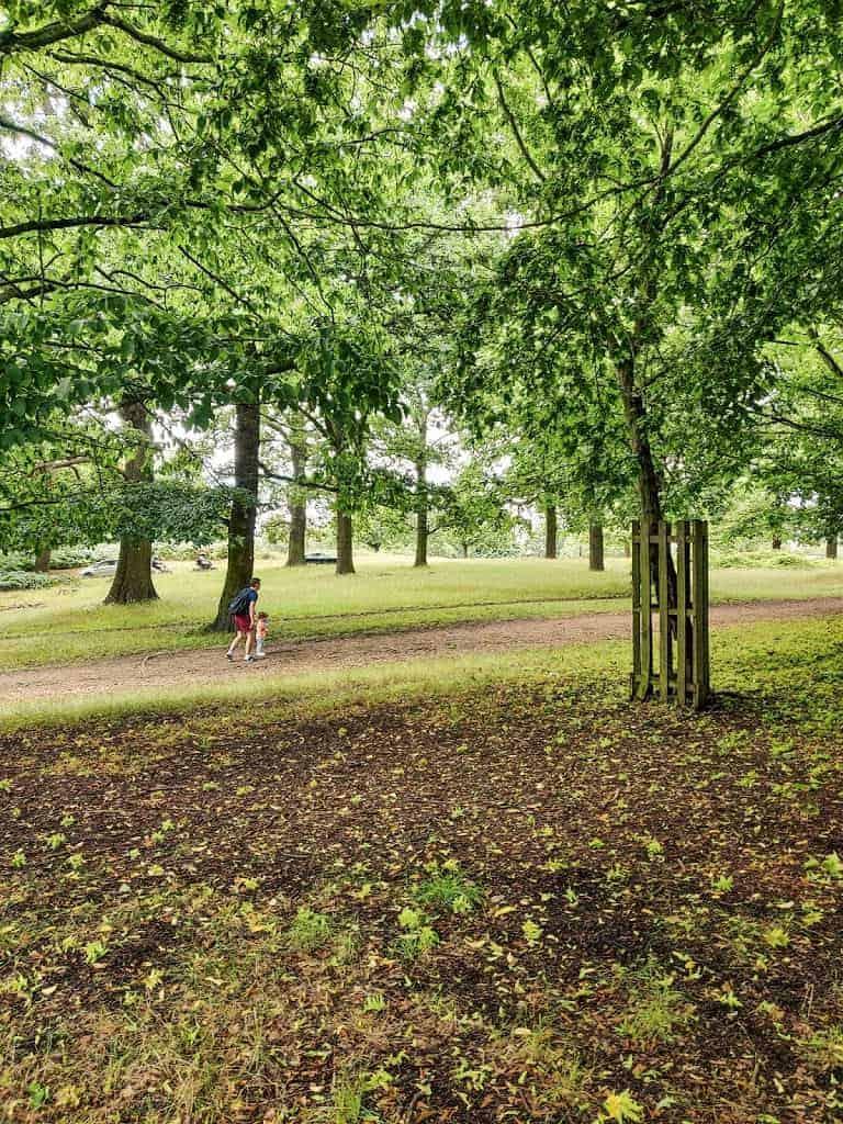 people walking in Richmond Park in London