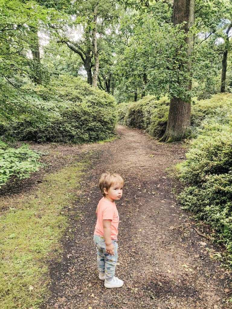 Richmond Park with a toddler