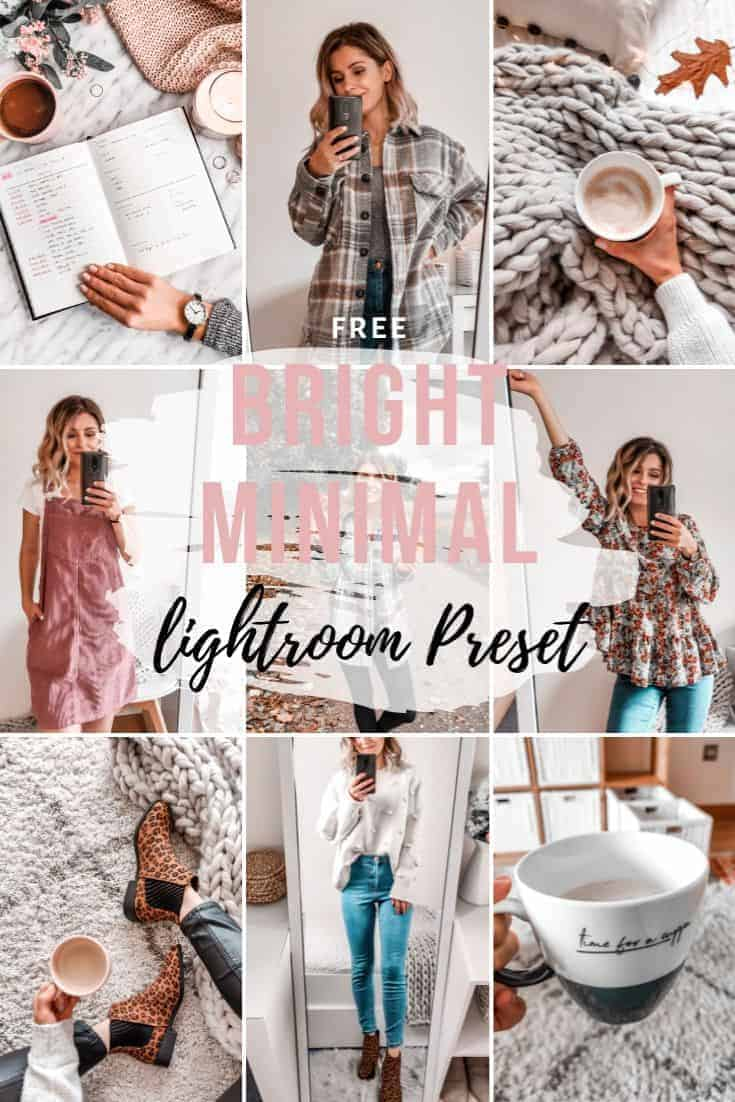 free lightroom preset for mobile bright browns